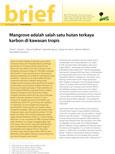 Mangrove adalah salah satu hutan terkaya karbon di kawasan tropis