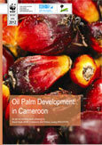 Oil palm development in Cameroon