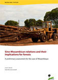 Sino-Mozambican relations and their implications for forests: A preliminary assessment for the case of Mozambique