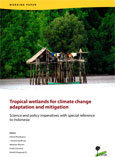 Ecosystem carbon stocks and land-use and land-cover change in tropical wetlands