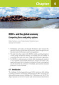 REDD+ and the global economy: Competing forces and policy options