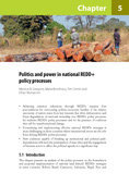 Politics and power in national REDD+ policy processes