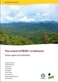 The context of REDD+ in Indonesia