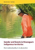 Gender and forests in Nicaragua\'s indigenous territories: From national policy to local practice