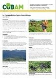 Le Paysage Maiko-Tayna-Kahuzi-Biega: Maiko-Tayna-Kahuzi-Biega Landscape