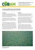 Le Paysage Maringa – Lopori – Wamba: Maringa – Lopori – Wamba Landscape
