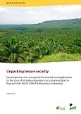 Unpacking tenure security: Development of a conceptual framework and application to the case of oil palm expansion on customary land in Kapuas Hulu district, West Kalimantan, Indonesia