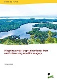Mapping global tropical wetlands from earth observing satellite imagery