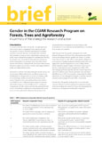 Gender in the CGIAR Research Program on Forests, Trees and Agroforestry : A summary of the strategy for research and action