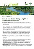 Forests and climate change adaptation: What policymakers should know