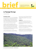 Le Paysage Virunga