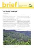 The Virunga Landscape
