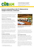Current vulnerability in the Tri-National de la Sangha landscape, Cameroon