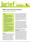 REDD+ policy networks in Indonesia
