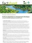 For�ts et adaptation au changement climatique: ce que les décideurs politiques devraient savoir