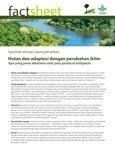 Hutan dan adaptasi dengan perubahan iklim: apa yang perlu diketahui oleh para pembuat kebijakan