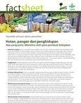 Hutan, pangan dan penghidupan: apa yang perlu diketahui oleh para pembuat kebijakan