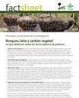 Bosques, le�a y carb�n vegetal: lo que deberían saber los formuladores de políticas