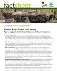 Florestas, lenha e carv�o vegetal: O que os formuladores de políticas deveriam saber