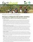 Bosques y mitigaci�n del cambio clim�tico: lo que deberían saber los formuladores de política