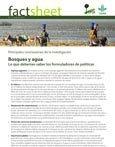 Bosques y agua: lo que deberían saber los formuladores de políticas