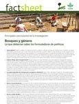 Bosques y género: lo que deberían saber los formuladores de políticas