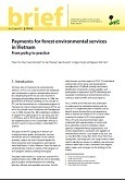 Payments for forest environmental services in Vietnam: from policy to practice