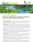 Florestas e adapta��o �s mudan�as clim�ticas: O que os formuladores de políticas deveriam saber