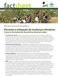 Florestas e mitiga��o de mudan�as clim�ticas: O que os formuladores de políticas deveriam saber