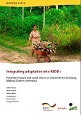Integrating adaptation into REDD+: potential impacts and social return on investment in Setulang, Malinau District, Indonesia
