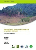 Payments for forest environmental services in Vietnam : from policy to practice