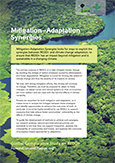 Mitigation - adaptation synergies <br>