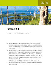 The evolution of REDD+: a political economy framework [Japanese]