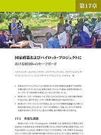 REDD+ safeguards in national policy discourse and pilot projects [Japanese]