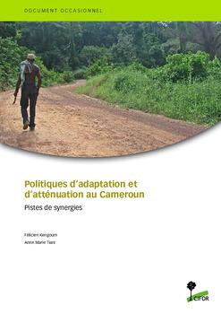 Politiques d'adaptation et d'atténuation au Cameroun: pistes de synergies