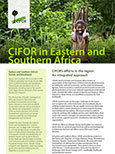 CIFOR in Eastern and Southern Africa