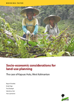 Socio-economic considerations for land use planning: The case of Kapuas Hulu, West Kalimantan