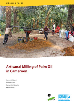 Artisanal Milling of Palm Oil in Cameroon