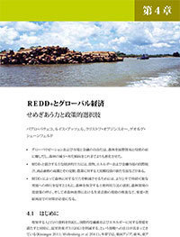 REDD+ and the global economy: Competing forces and policy options [Japanese]
