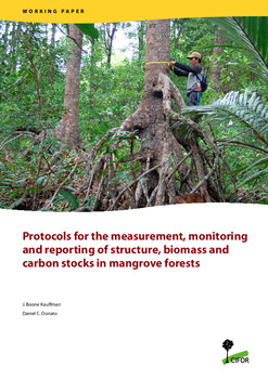 Protocolo para la medici�n, monitoreo y reporte de la estructura, biomasa y reservas de carbono de los manglares