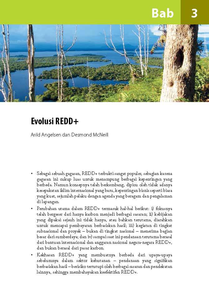 Evolusi REDD+