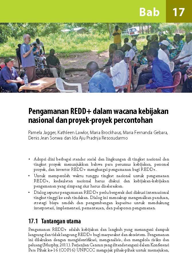 Pengamanan REDD+ dalam wacana kebijakan nasional dan proyek-proyek percontohan