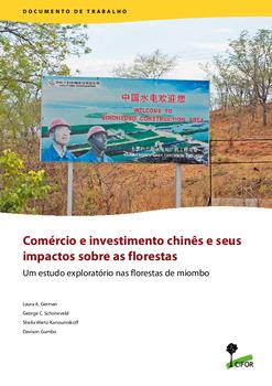 Com�rcio e investimento chin�s e seus impactos sobre as florestas: Um estudo exploratório nas florestas de miombo