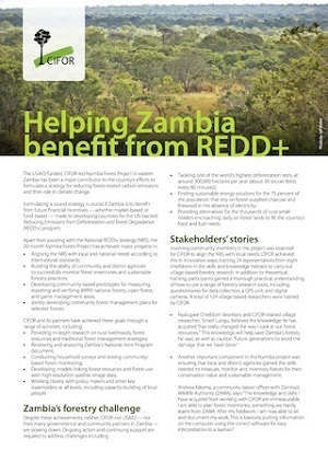Helping Zambia benefit from REDD+