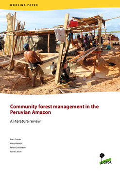 Community forest management in the Peruvian Amazon: A literature review