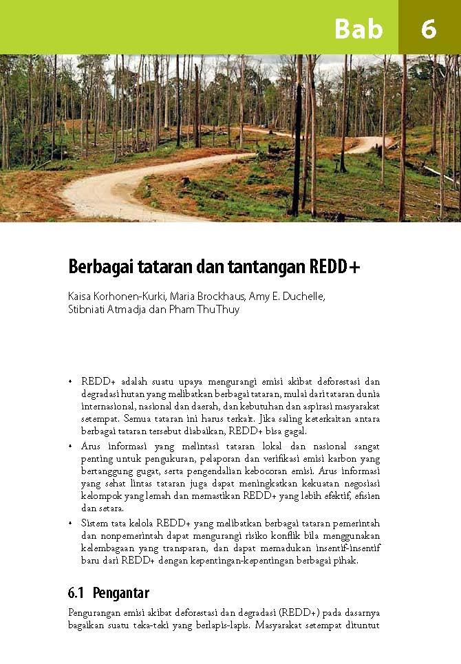 Berbagai tataran dan tantangan REDD+