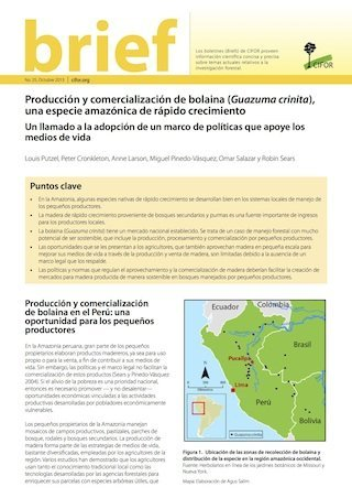 Peruvian smallholder production and marketing of bolaina (Guazuma crinita), a fast-growing Amazonian timber species : call for a pro-livelihoods policy environment