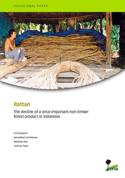 Rattan: The decline of a once-important non-timber forest product in Indonesia