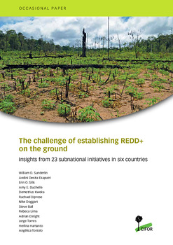 The challenge of establishing REDD+ on the ground: Insights from 23 subnational initiatives in six countries