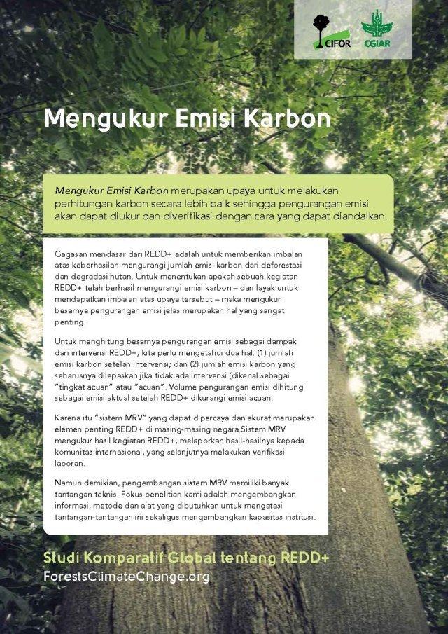 Mengukur Emisi Karbon